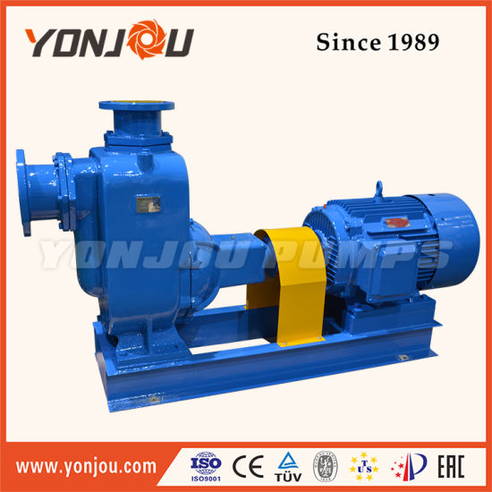 Zx Self-Priming Stainless Steel Ballast Pump
