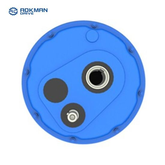 SGS Guranteed Shaft Mounted Gearbox From Aokman
