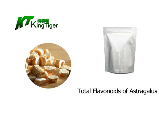 Hot Selling Astragalus Root Extract
