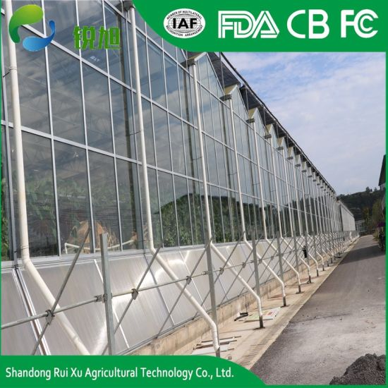 Intelligent Commercial Glass Greenhouse for Sale pictures & photos