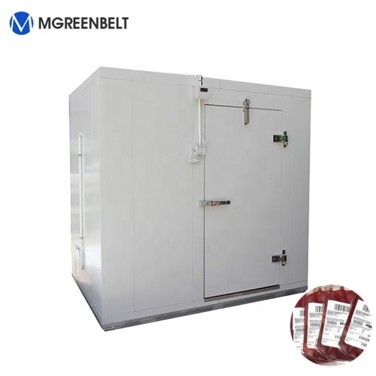 Walk in Cold Room Storage for Blood Keeping in Hospital