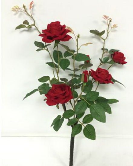 Artificial Flowers of Mountain Rose 71cm Gu-D7019 pictures & photos