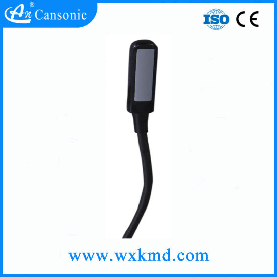5.0MHz Rectal Probe for The Ultrasound Scanner pictures & photos