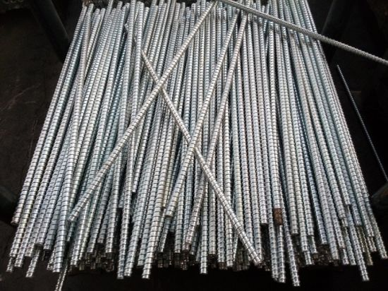 Scaffold Formwork Scaffolding Fromwork Accessories Tie Rod pictures & photos