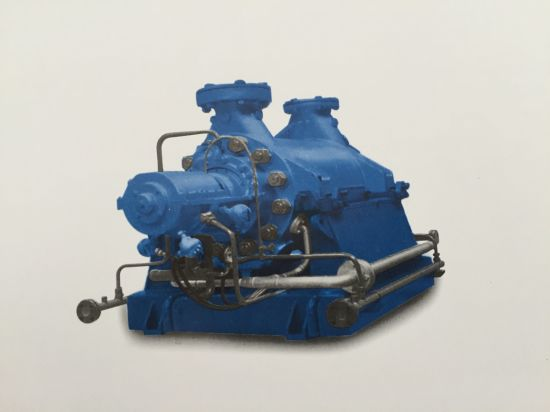 Cg Series High-Pressure Supply Multistagel Pump pictures & photos