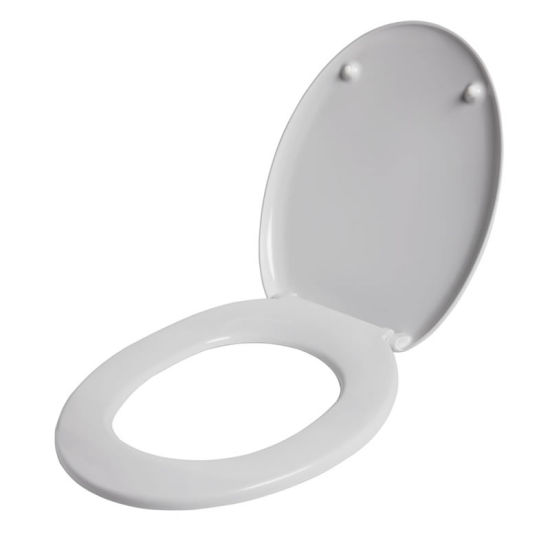 Customize Plastic Inejction Mould for Toilet Seat pictures & photos