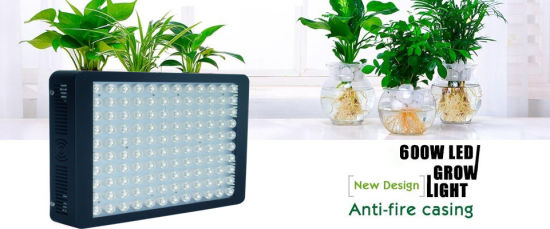 China Customized Color Ratio 600W LED Plant Grow Light for