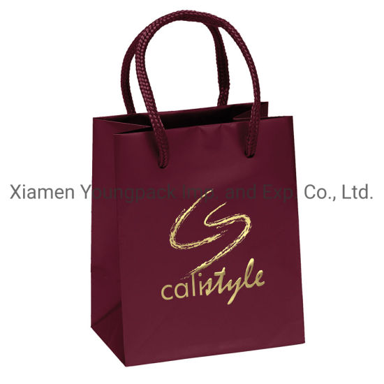 Luxury Hot Stamping Gold Foil Matt Paper Gift Carry Bag with Rope Handle