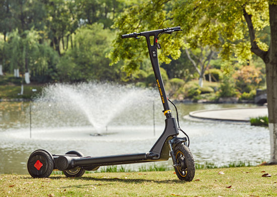 3 Wheel Battery Cool Power Electric Scooter with High Price