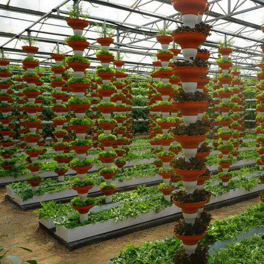 Hydroponic Growing System Film Greenhouse