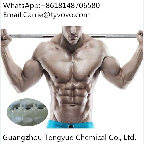European High Purity 99%Ace031 Injectable Steroid Drug for Fitness