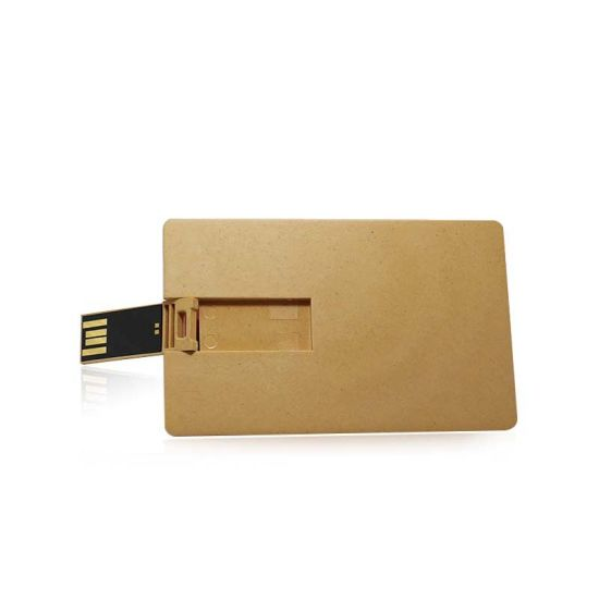 Customized Business Card Personalized Printed Degradable Material Plastic USB Card Printed Logo USB Flash Drives (UL-P056)