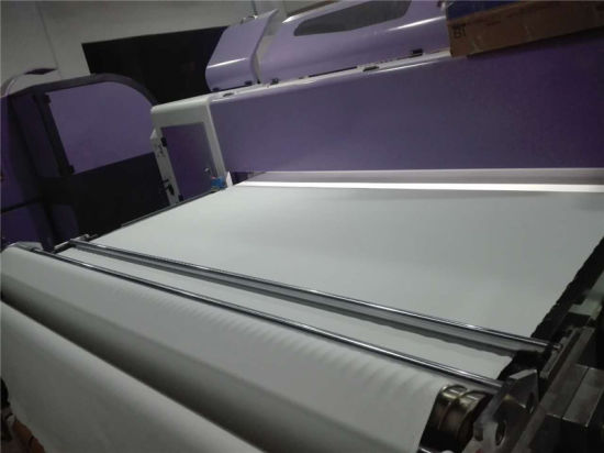 Textile Belt Printer, Pieces Printing and Roll to Roll Printing. pictures & photos