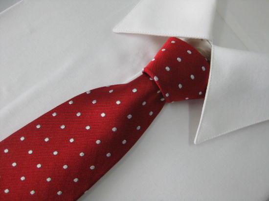 Men's Fashion Dotty Design Silk Woven Neckties