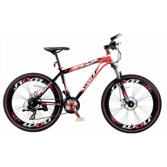 High Quality New Mountain Bike (MTB-002)