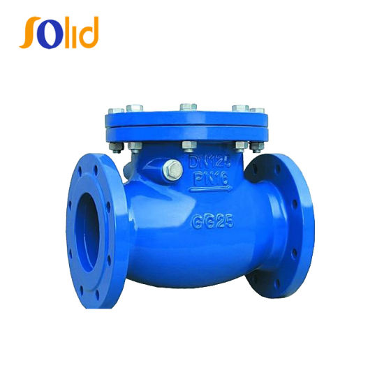 Ductile Cast Iron Double Flanged Swing Check Valve Pn16 for Water Supply