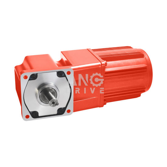 Ang 25W 30W 80*80mm AC Right Angle Gear Motor