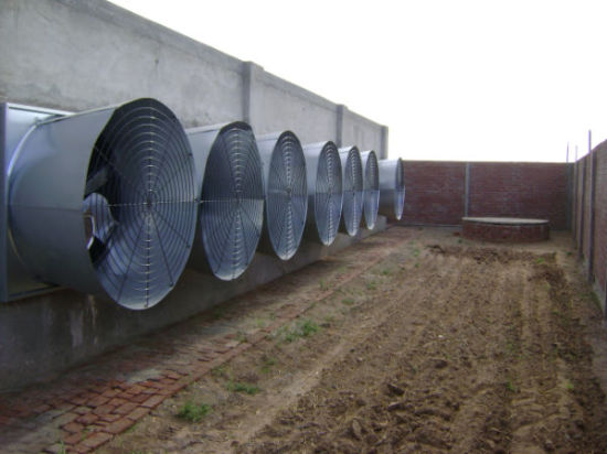 High Quality Butterfly Cone Fan for Swine/Poultry Farm pictures & photos