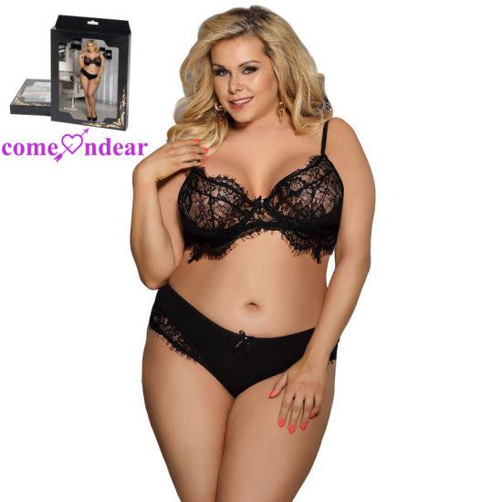 Plus Size Black Lace Ladies Sexy Panty and Bra Sets