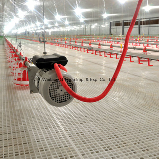 High Quality Automatic Poultry Farm Plastic Floor for Broiler/Breeder/Layer Chicken