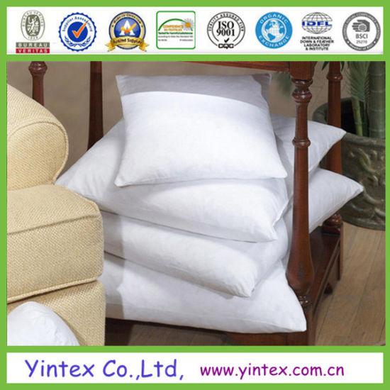 China Popular Cheap Down Cushion Insert China Cushion Insert Adorable Cheap Down Pillow Inserts