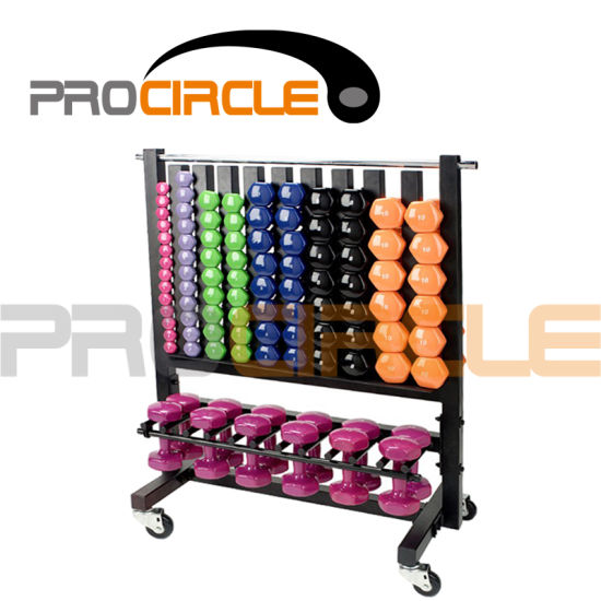 Crossfit Gym Equipment High Quality Storage Dumbbell Rack (PC DR1004)