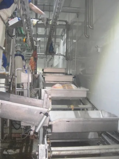 Sheep Slaughtering V-Type Convey Machine for Slaughterhouse Plant
