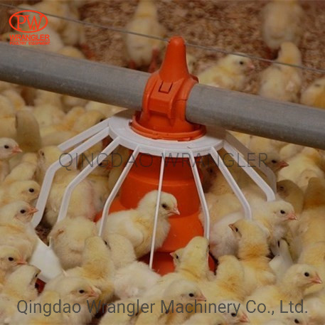 Automatic Auger Feed System for Poultry Broiler Breeder Equipment