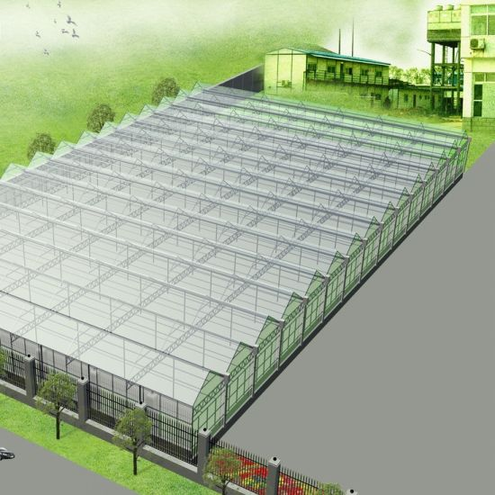 Agriculture Greenhouse Poly Tunnel for Planting