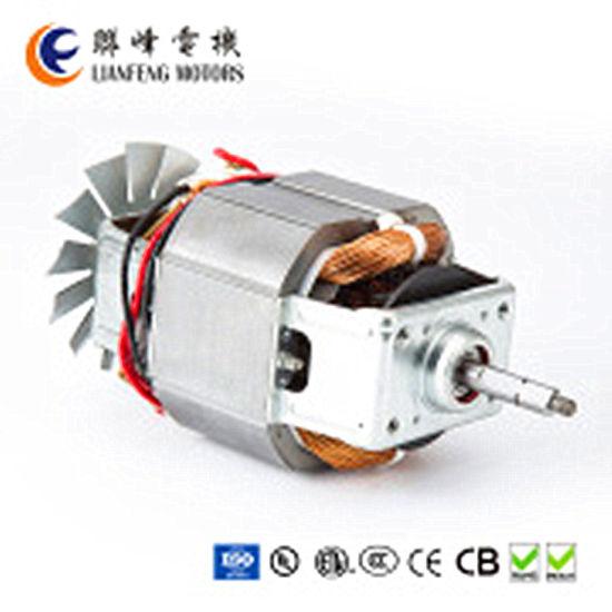 China AC Motor for Juicer Blender 100V/50Hz, 110V/60Hz, 120V/60Hz ...
