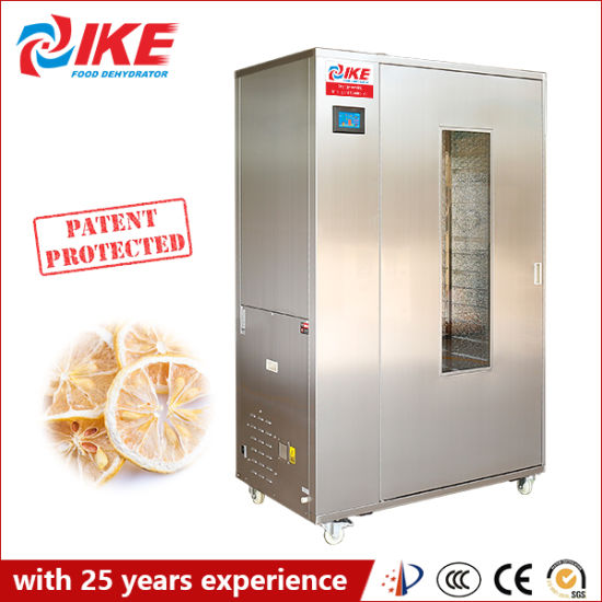 Wrh-100g Commercial Small Food Vegetable and Fruit Drying Processing Machine for Sale