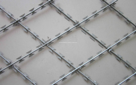 Electric Galvanized/Hot-Dipped Galvanized Razor Barbed Wire pictures & photos