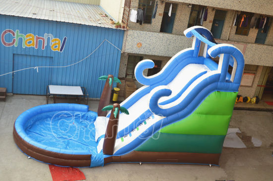 Summer Tropical Beach Inflatable Water Slide for Backyard pictures & photos