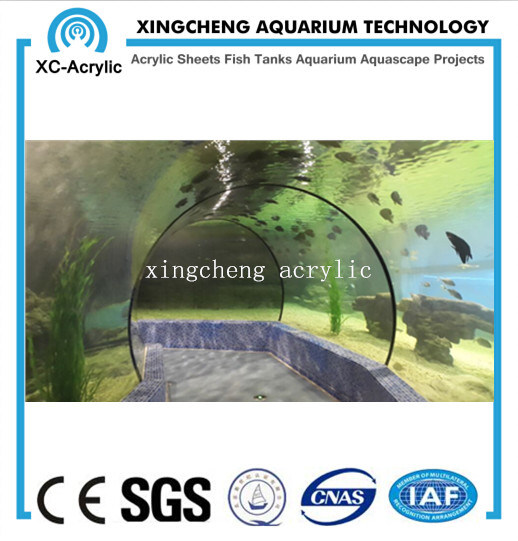 Customized Aquarium Tunnel Acrylic Material Shark Tank Project Price pictures & photos