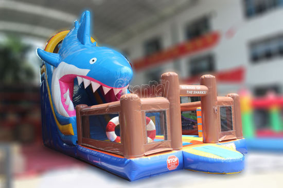 The Shark Inflatable Slide Inflatable Long Slide for Commercial Use (chsl422) pictures & photos