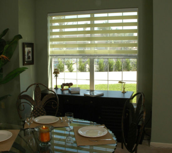 Zebra Blinds / Vision Blinds / Sheer Roller Blinds for Interior Decoration