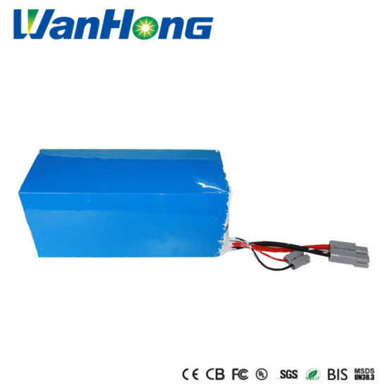 48V 50ah Lithium Ion Battery Pack/LiFePO4 Battery/Li Ion Battery/Solar Power Battery/Electric Scooter Battery for Golf Car