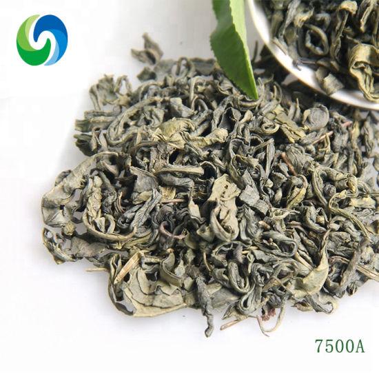 7500 China Supplier Best Organic Green Tea
