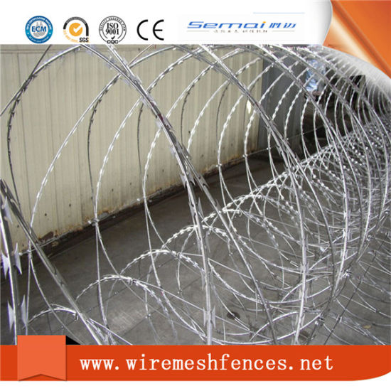 Anti Climb Protective Low Carbonl Razor Barbed Wire Mesh Fence for Wholesale