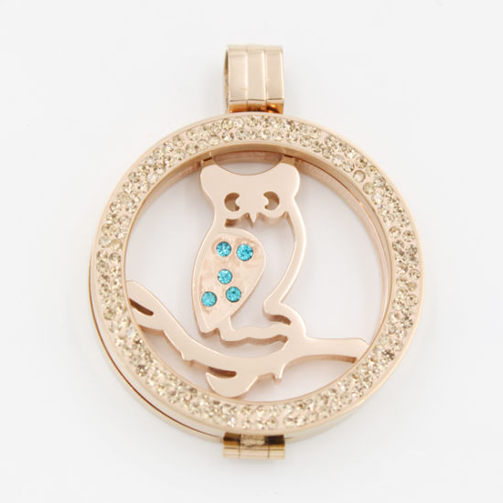 Owl Coin Plate Fit Various Locket Style Fashion Jewelry for Gift pictures & photos