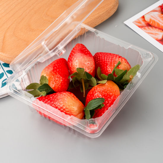 Wholesale Disposable Clear Pet Plastic Fruit Clamshell Container