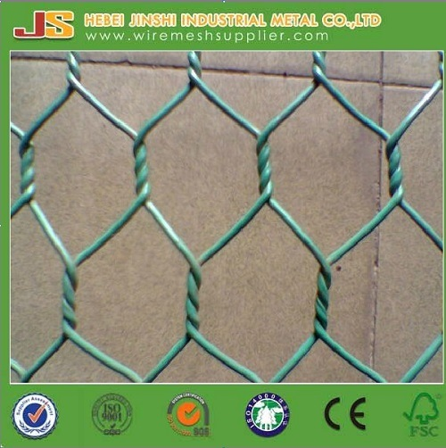 High Quality PVC Chicken Wire Netting From Factory pictures & photos