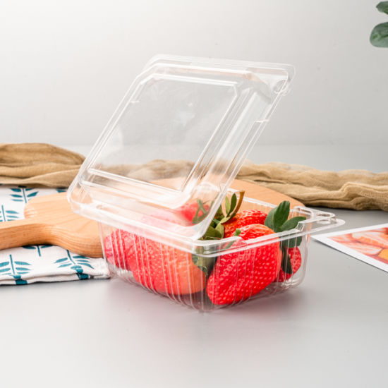 Hot Sale Wholesale Disposable Clear Pet Plastic Fruit Clamshell Container