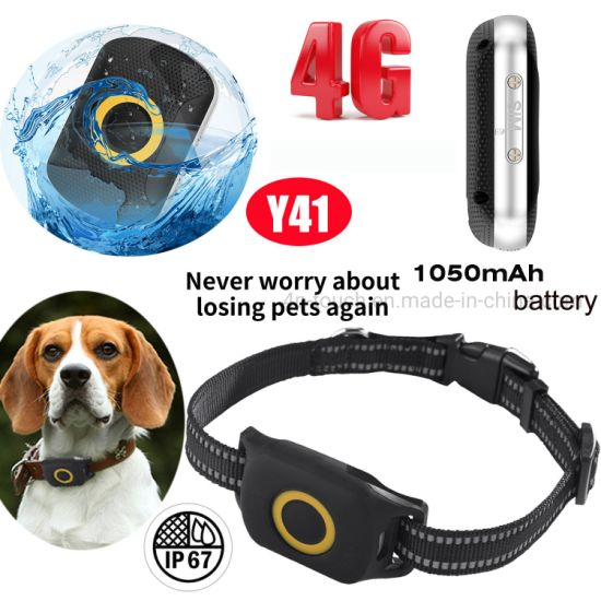 Factory Supplier 4G LTE IP67 Waterproof Anti Lost Puppy Pet Mini Tracker GPS with 1050mAh Long Working Time Y41
