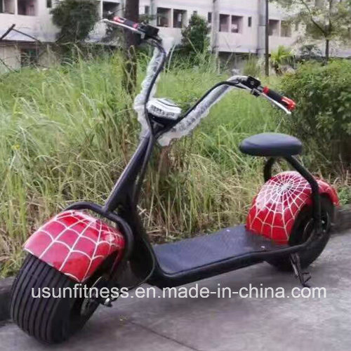 New Design 1000W Electric Bicycle Electric Motorcycle Electric Scooter with Ce pictures & photos