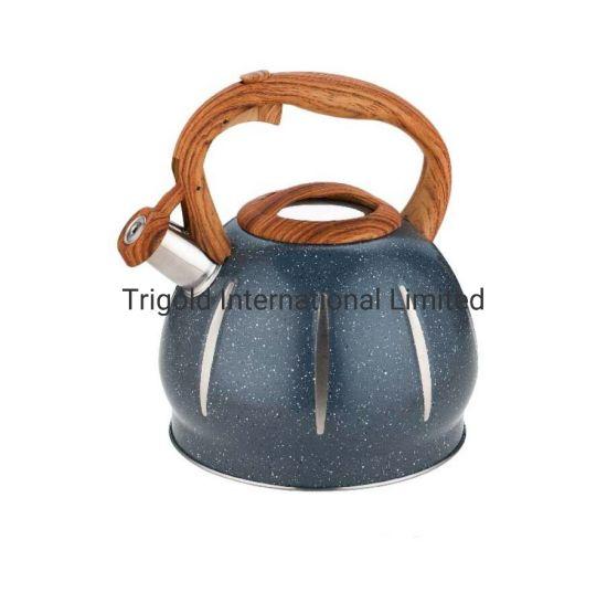 Tea Kettle Stainless Steel Tgk2951