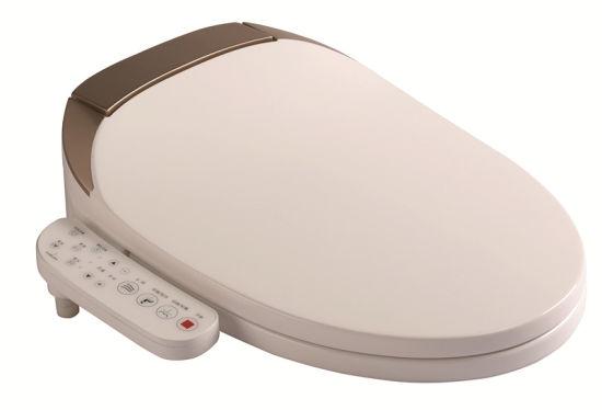 Luxury Automatic Open Close Smart Toilet Seat Bidet China
