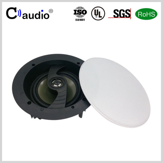 5.25 Inch Swiveling Tweeter Active Speaker with Coated Paper Cone