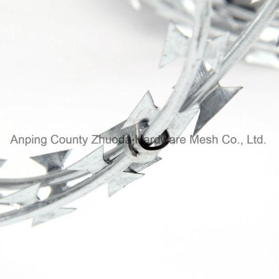 Amazon Ebay Wholesale Galvanized Bto22 Razor Barbed Wire Razor Wire for Fencing