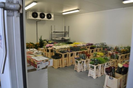 Walk in Chambre Froide Room for Fruit Vegetable Flower storage